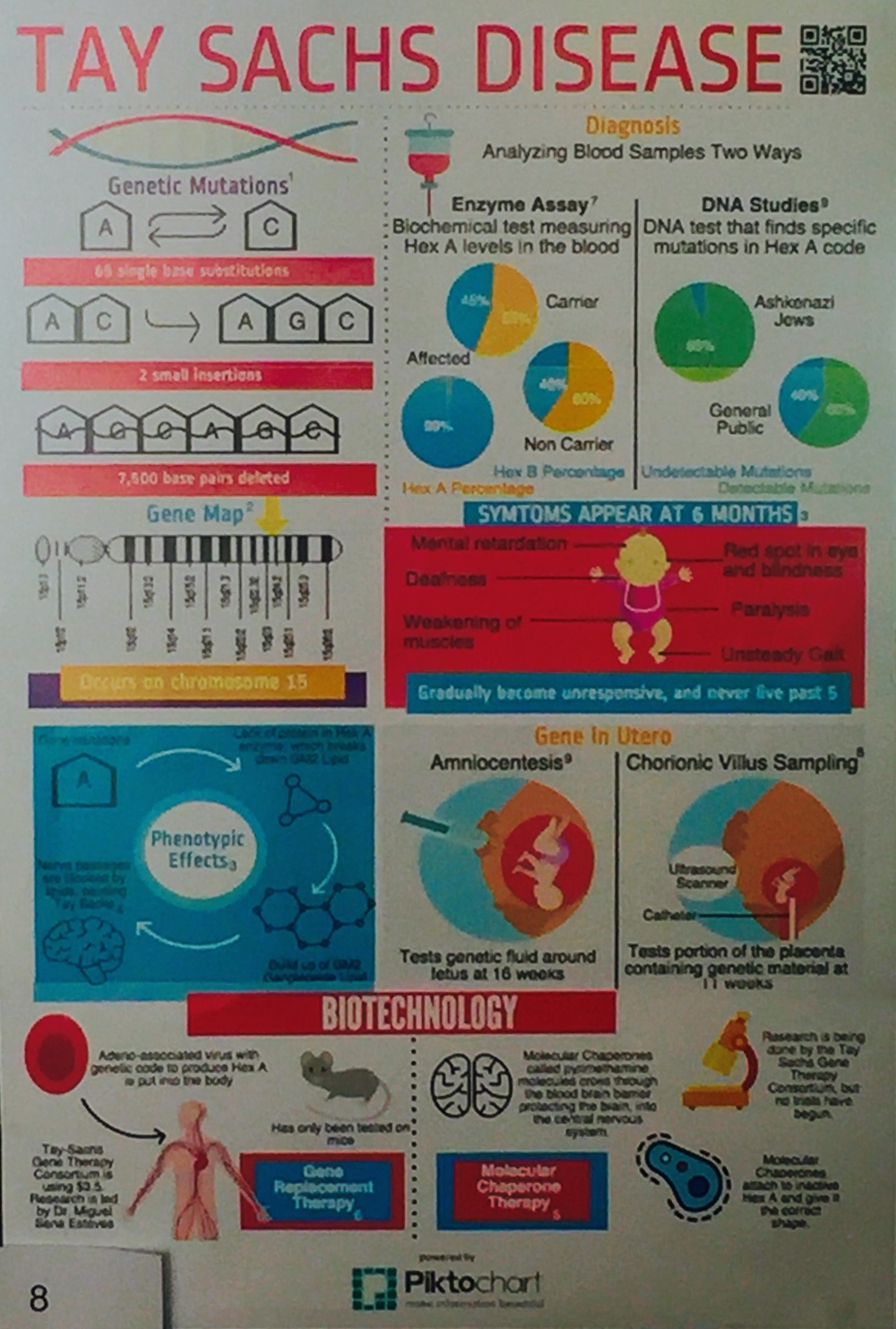 Student infographic from a genetics project.