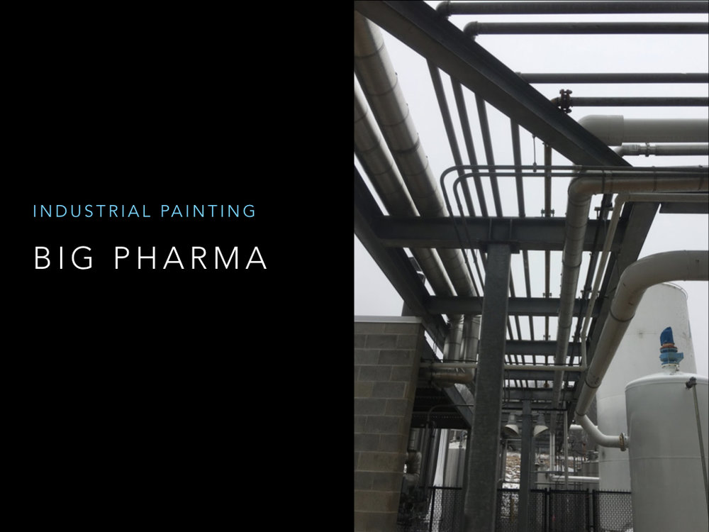 Megna Painting Project Portfolio..194.jpeg