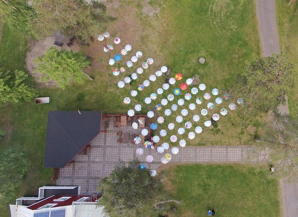 Klabböles paraplymängd i vertikalperspektiv. Foto: Per Lundberg,