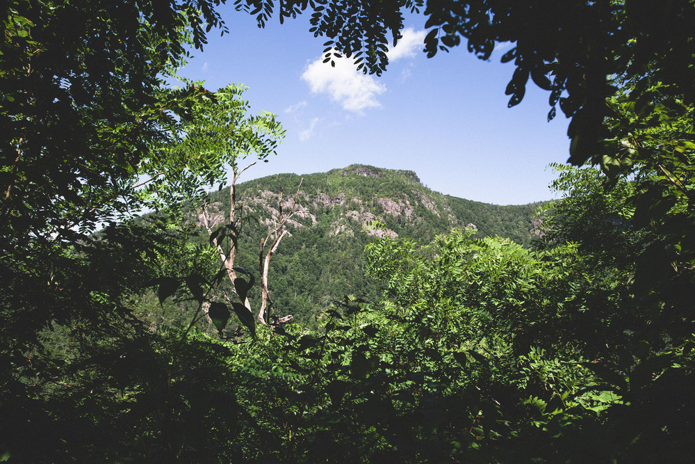 pisgah forest personals Located in the pisgah national forest,  dating back to the 1890s, the biltmore estate in asheville is an 8,000-acre property that includes a winery, .