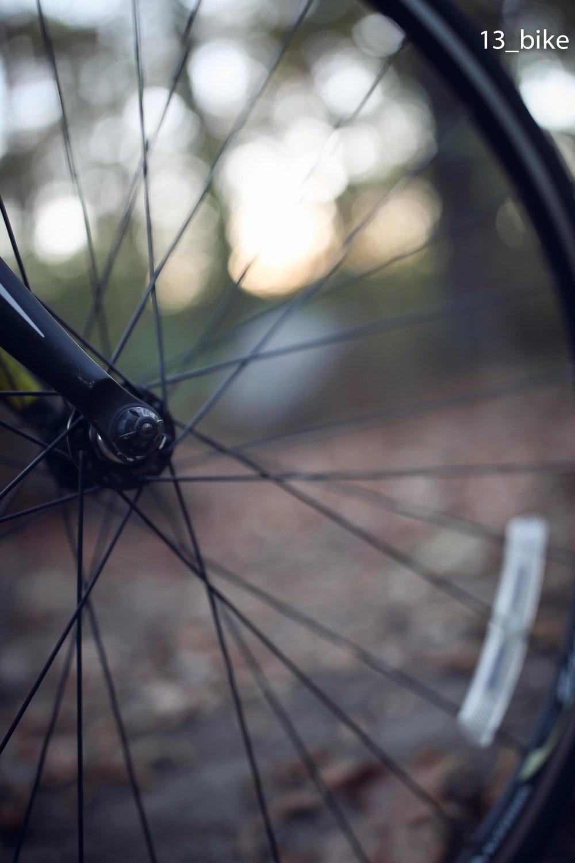 13_bike.jpg