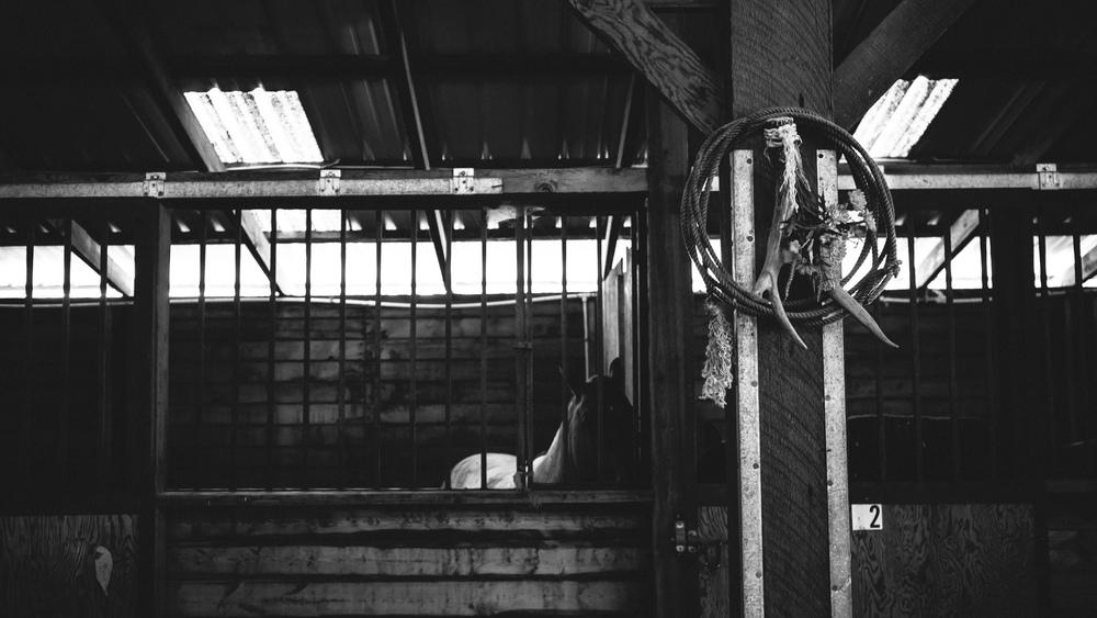 RanchWedding-3.jpg