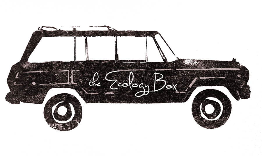 the Ecology Box