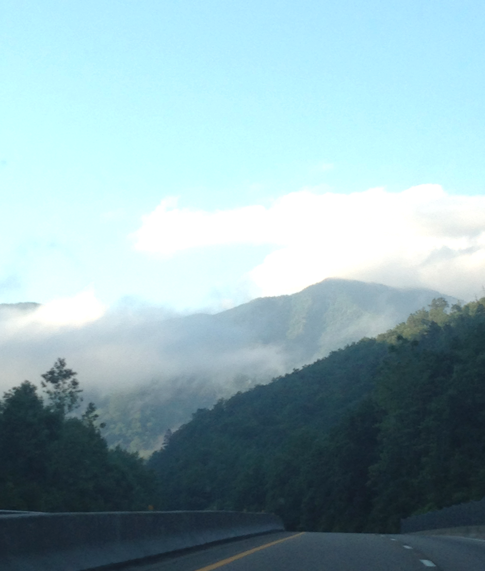 Driving into South Carolina (Don't worry Kari took this while I was driving!)