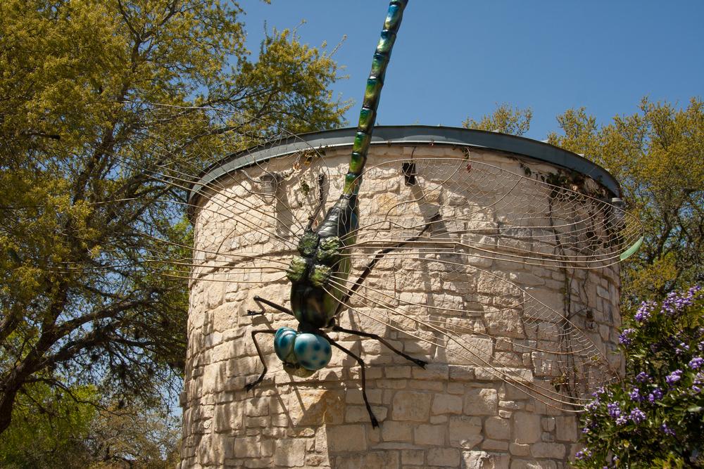 Austin-2010-6833.jpg