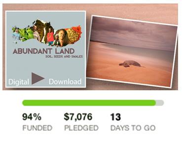 kickstarter_100.jpg