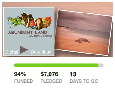Only 13 days left!! Receive photography of Moloka'i and a digital download of the film when you support Abundant Land.
