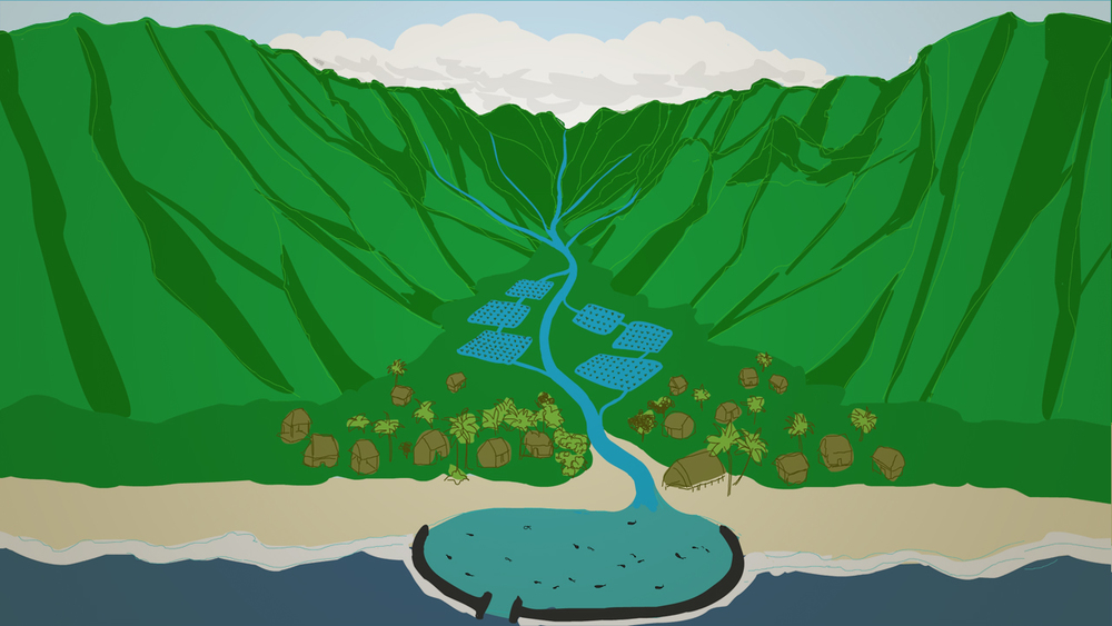 Ahupua'a - Rendition of the ancient Hawaiian land management system; integrating taro farming and the raising of fish throughout the terraces and into the fishpond.  Drawing by Laurie Sumiye.