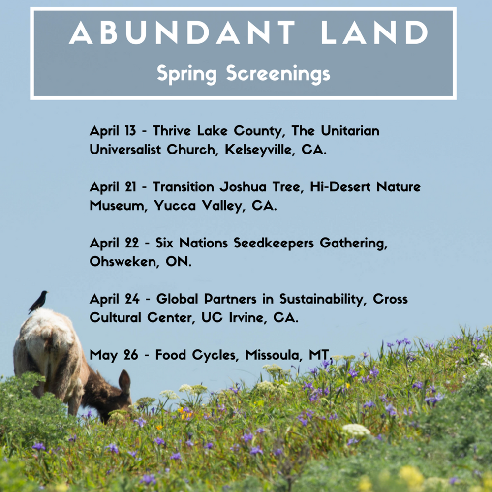 spring screenings1.png