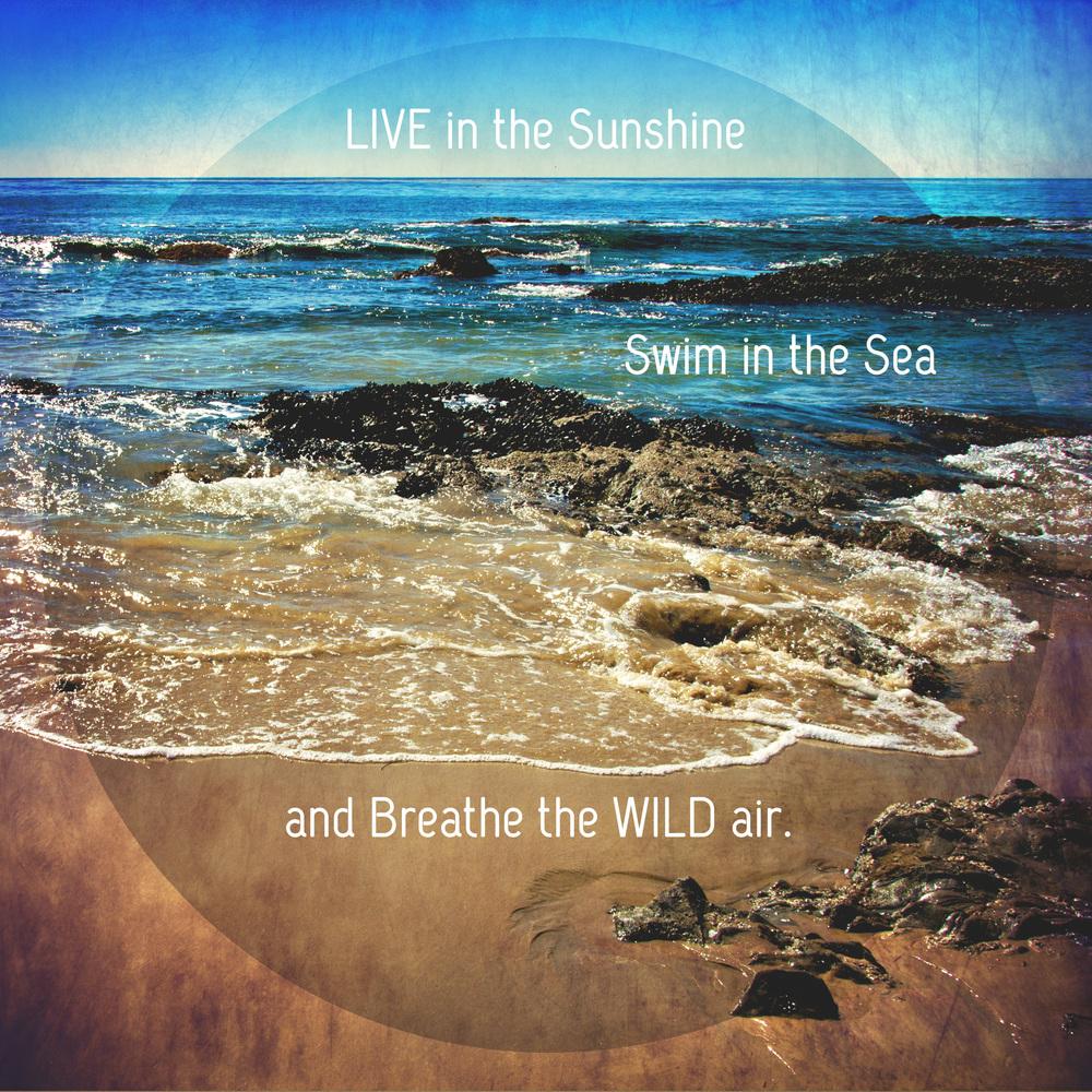 ocean quotables.jpg