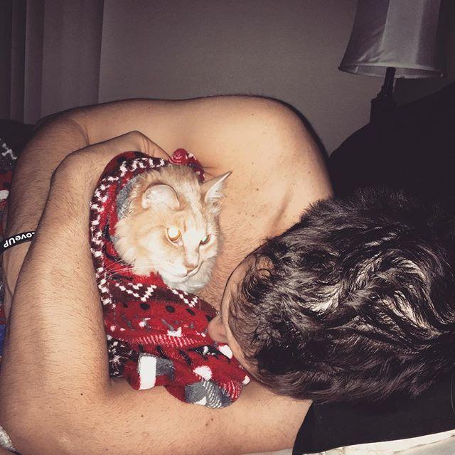 So #Damien definitely didn't enjoy cuddling this morning HAHA #lol