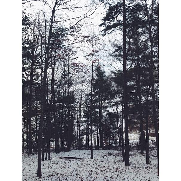 Screen Shot 2014-01-20 at 1.31.44 PM.png