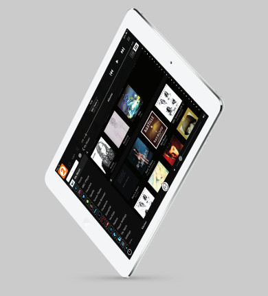 iPad control for the system