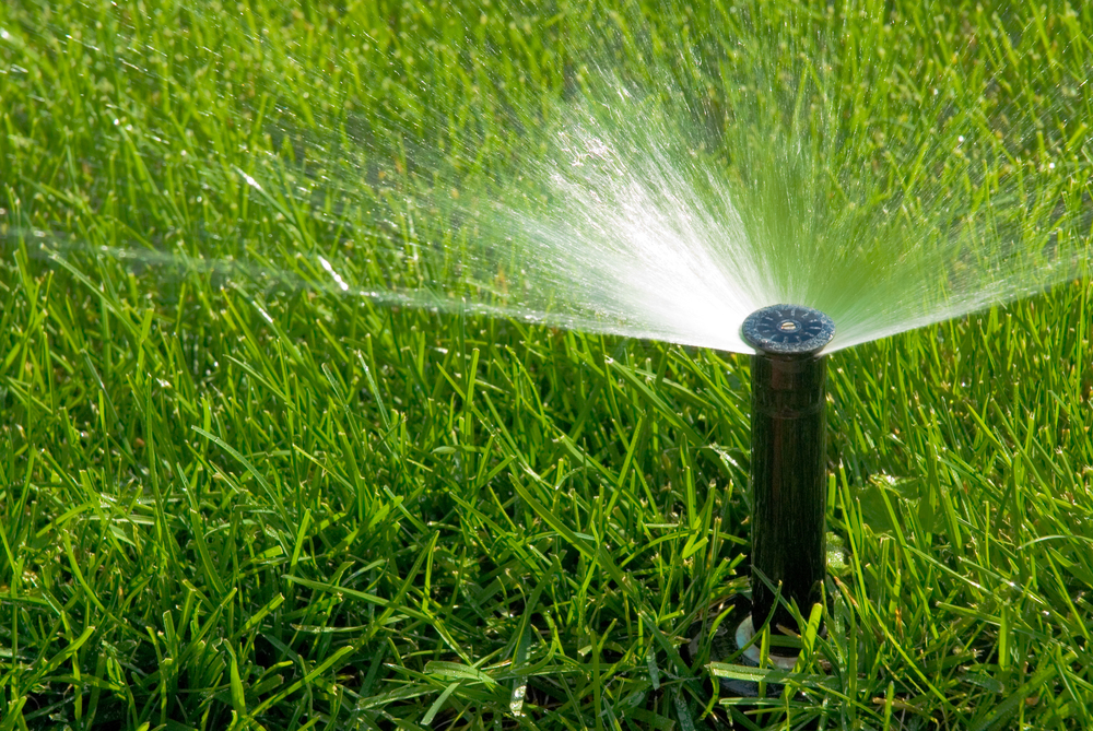 Regular watering is essential to a healthy garden. We can provide you  an estimate and install irrigation to suit your garden needs. We also offer regular irrigation maintenance year-round: Spring: Complete system check and turn on Summer: Increase water supply  and system check Fall: Decrease water supply and system check Winter: Winterize and shut down system