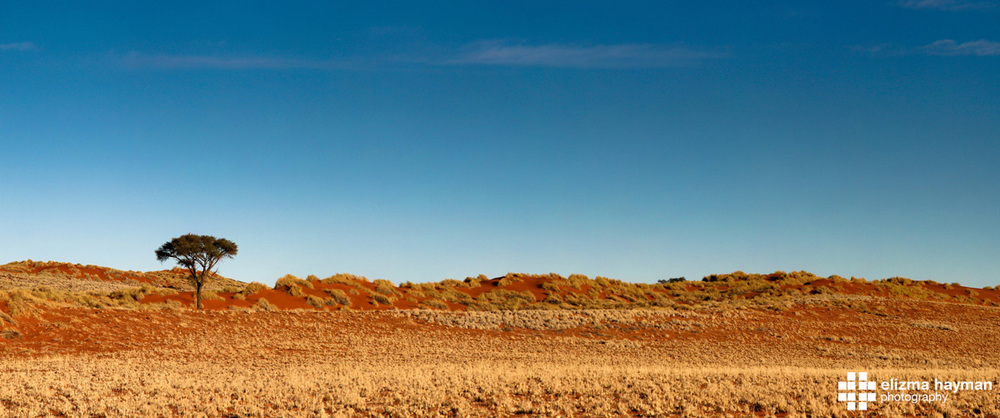 IMG_0692 Panorama-2.jpg