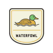 POW_badges_waterfowl.jpg