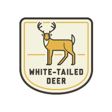 POW_badges_white-tailed_deer.jpg