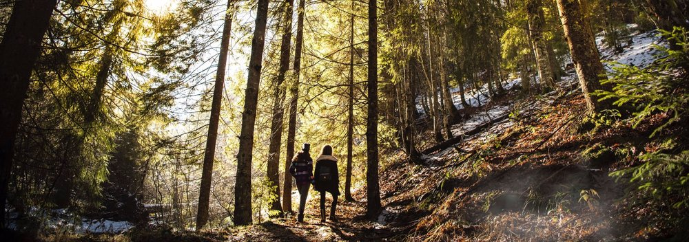 women+hike+trees.jpg