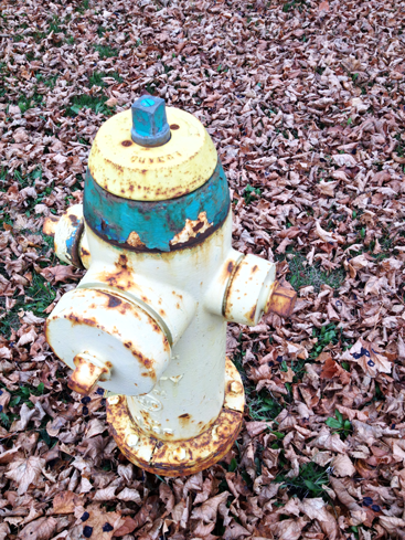 hydrant-munster.png