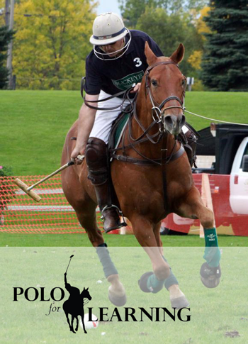 polo-for-learning.png