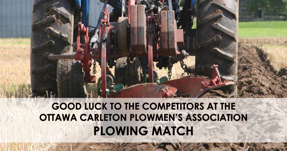 Plowing match.jpg