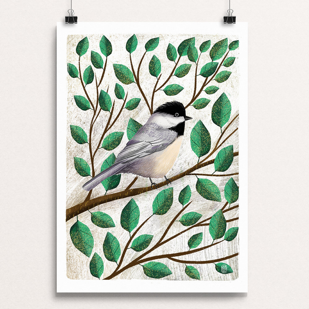 02 20_Winter_Birds_-_Chickadee clips.jpg