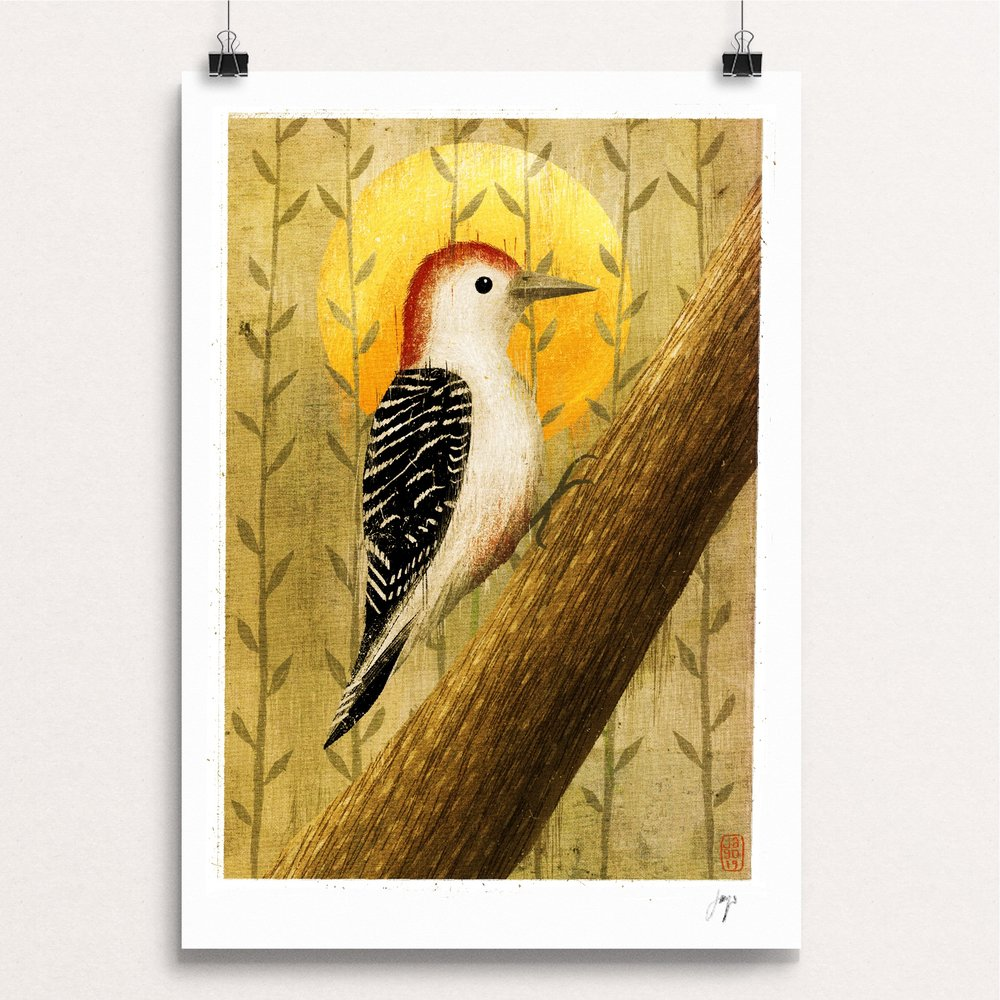 10 20 Winter Birds Red Bellied Woodpecker clips.JPG
