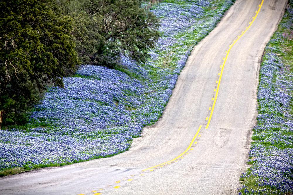 Happy Road No. 2.jpg
