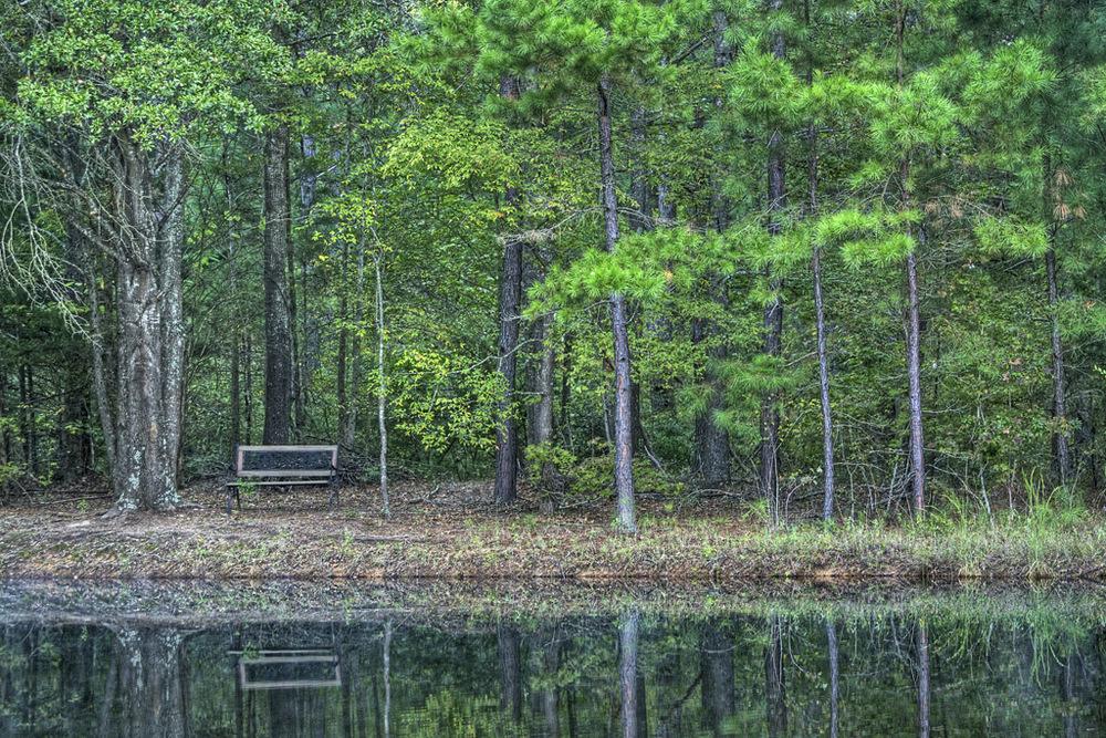 Lake Grady.jpg