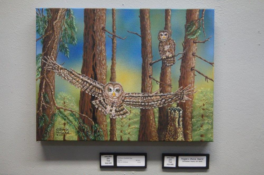 Northern Spotted Owl.jpg