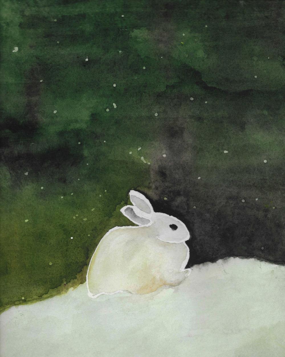 frozen bunny.jpg