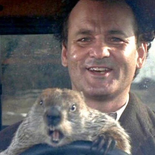 Name a more iconic duo.. join us tonight for the viewing of this fantastic tale featuring #billmurray. We're with @eatseehear in Pasadena from 530-10pm. #groundhogday