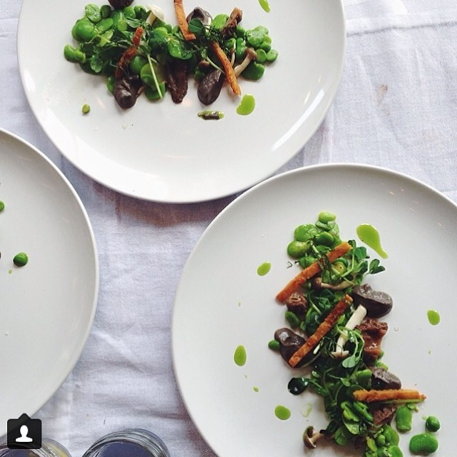 Fava course by @_kate_lewis
