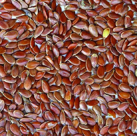 Farming Seeds $200.00