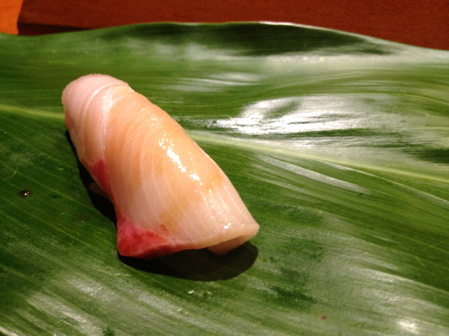 Perfect Yellowtail