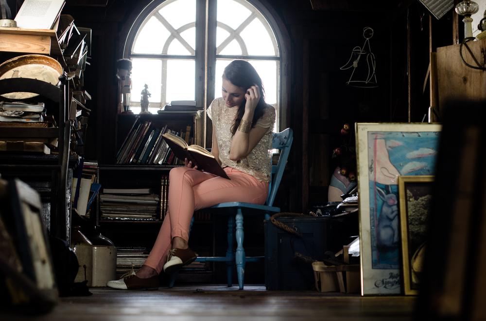 cheyanne_attic_library.JPG