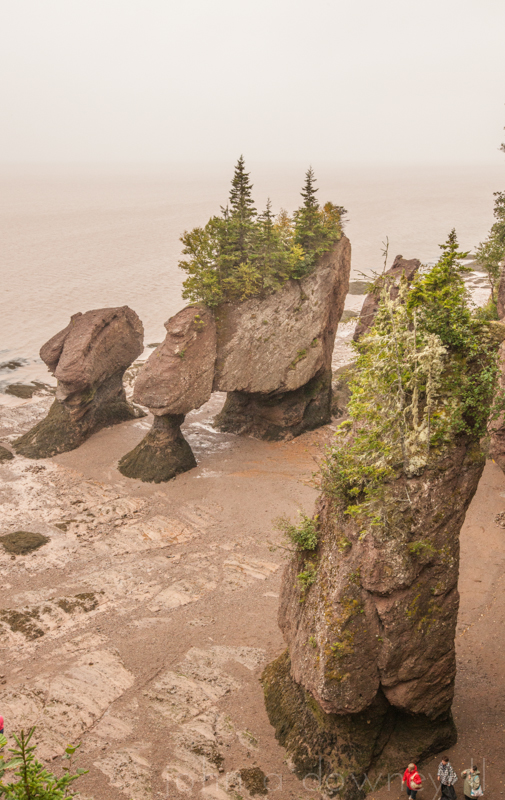 Outgoing tide at Hopewell Rocks.  New Brunswick, Canada, 2013.