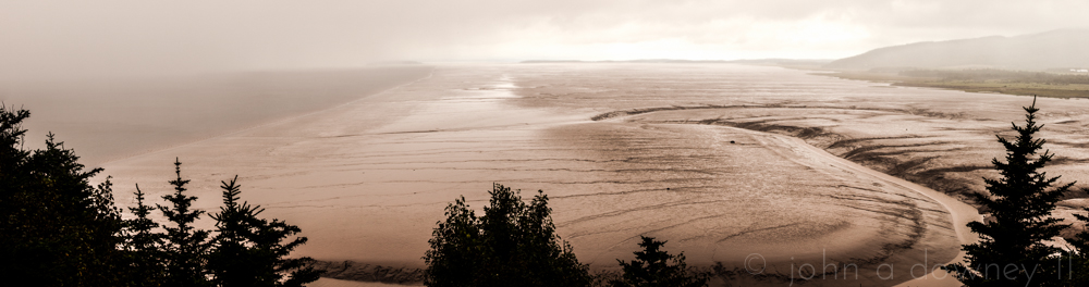 Daniels Flats is a fragile ecosystem, home to millions of shorebirds that rely on an abundance of small crustaceans residing in the thick, muddy bottom of the Bay of Fundy. Four kilometers across, the mudflats are impressively long at low tide.