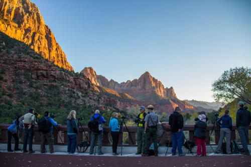Photographers crowd over the Virgin River in Zion National Park in Utah at sunset.  They're some pretty nice people!