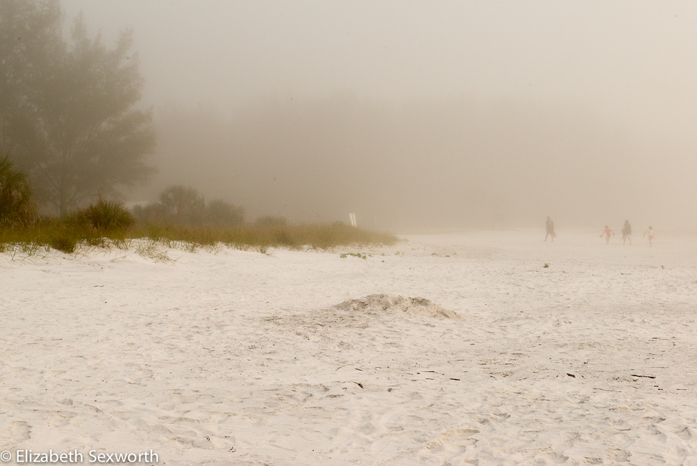Winter Fog at Fort DeSoto
