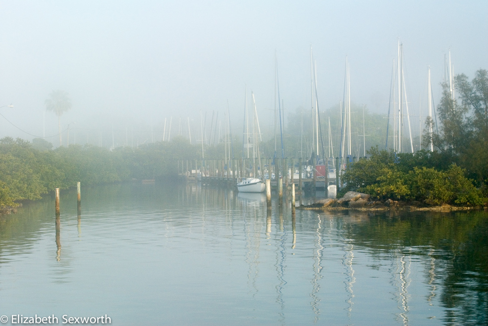Gulfport Marina in Early Morning Mist