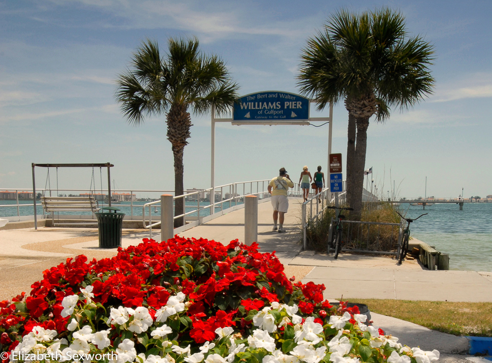 Williams Pier in Gulfport
