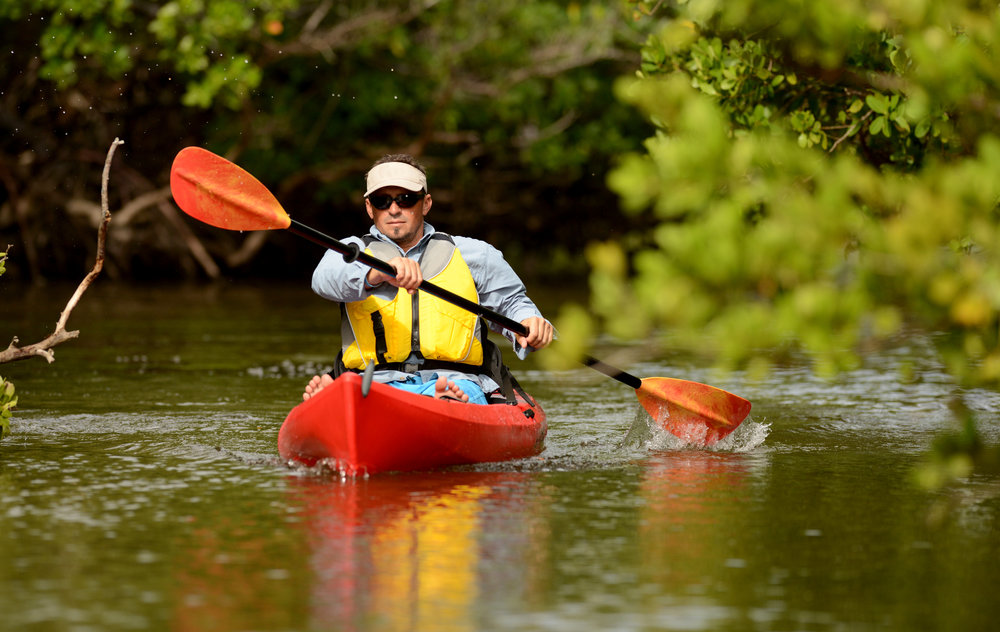 shutterstock_180297689 closeup man in kayak mangroves.jpg