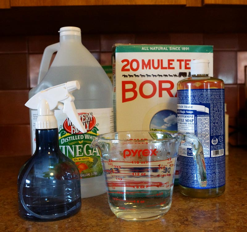DIY Non-Toxic All Purpose Cleaner - 409 Replacement
