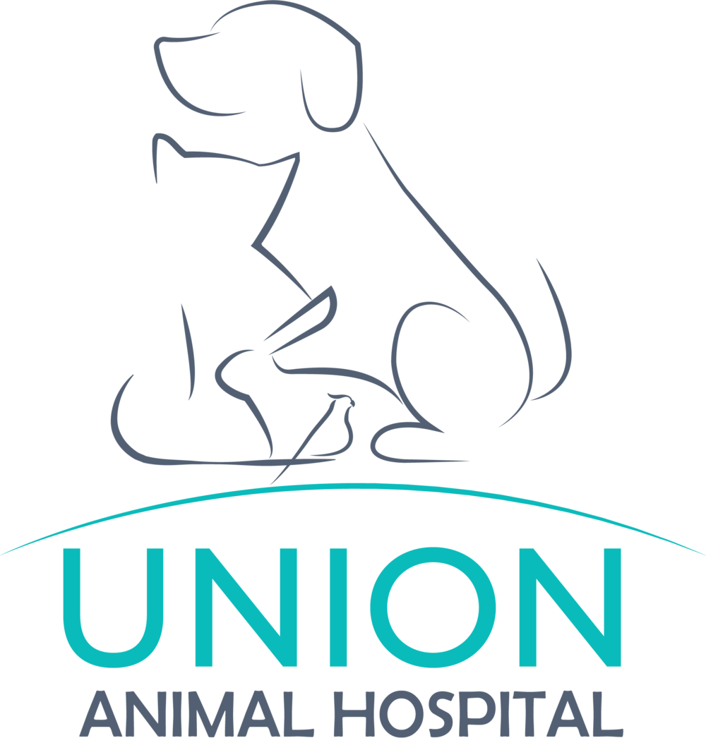 union animal hospital.png