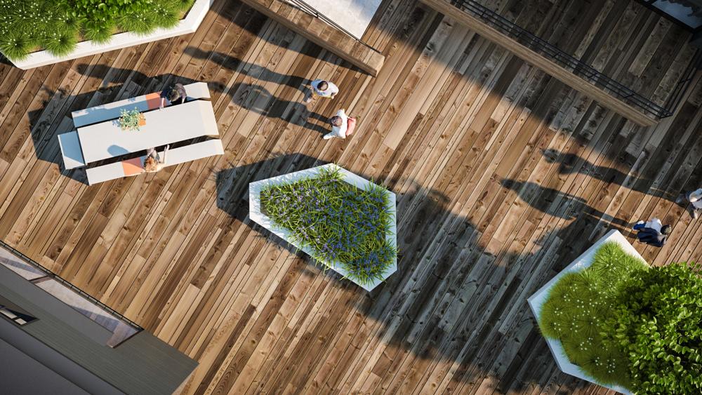 Terrace Birdseye 2 (00075) CR.jpg