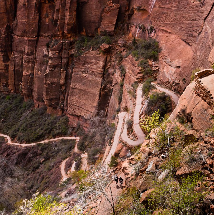 West Rim Trail, below Angels Landing, Zion National Park, Utah  www.flickr.com/photos/henrikj/ (CC BY-NC 2.0)