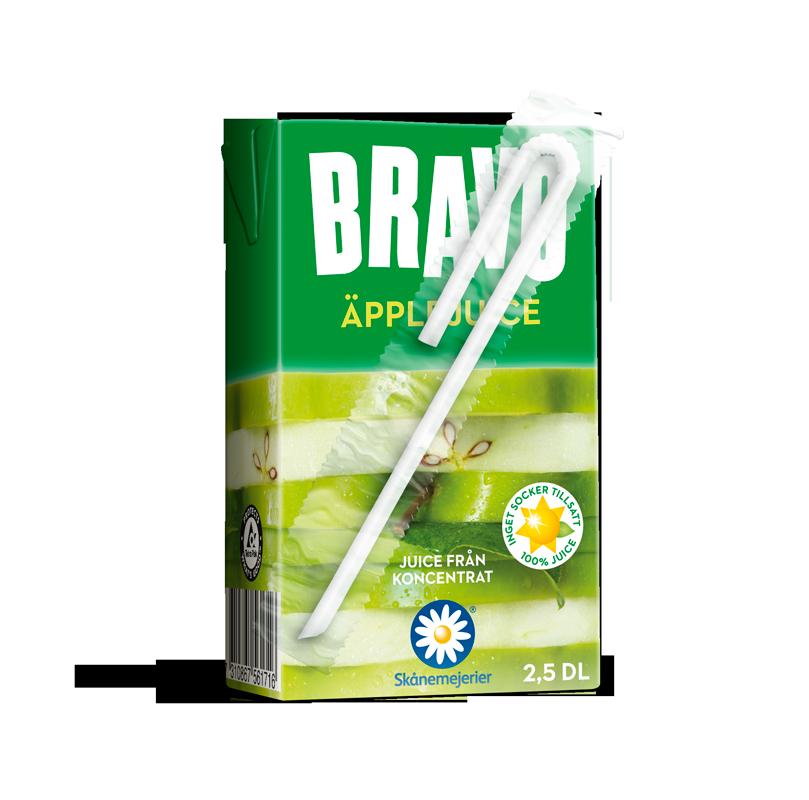 Bravo 2.5 DL Dummy