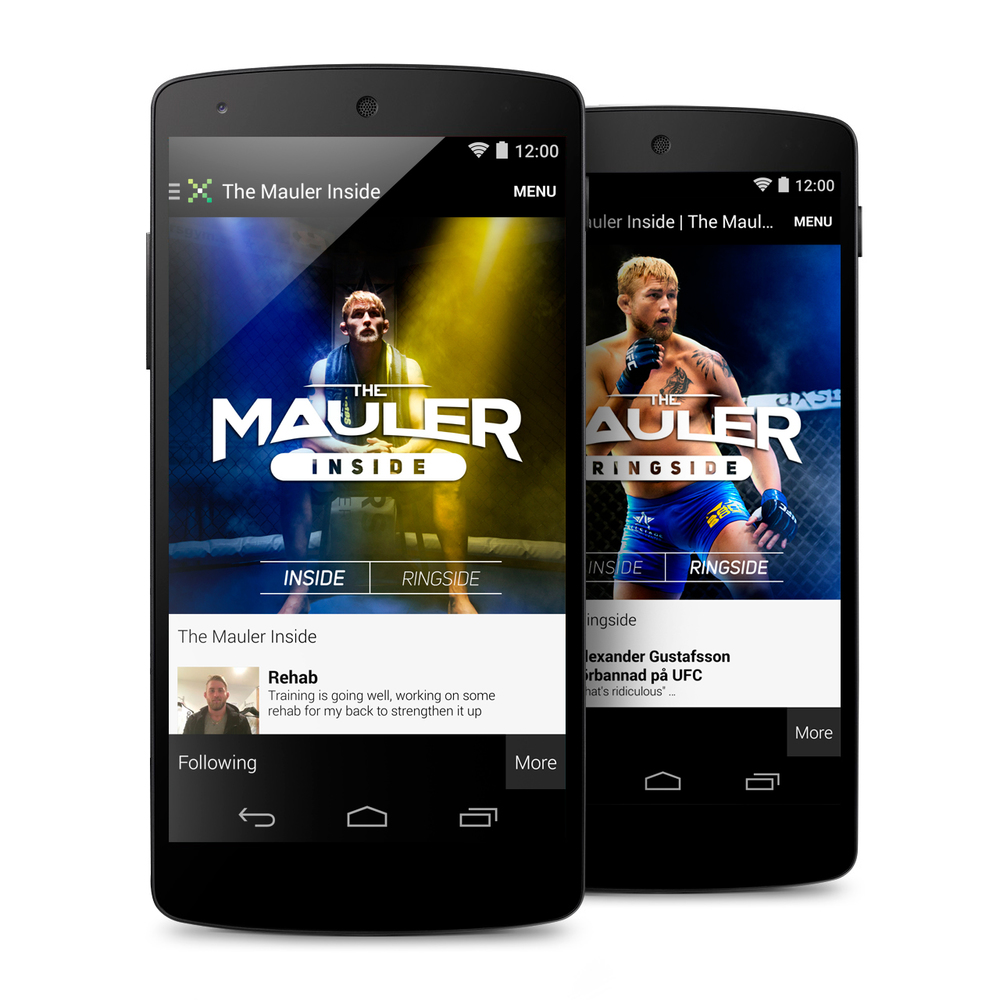 The Mauler - Inside & Ringside UI Artwork (Mikz App)