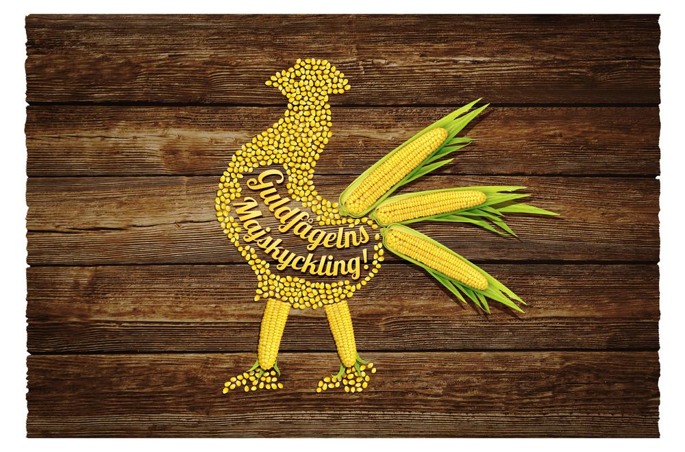 Guldfågeln Majskyckling Artwork
